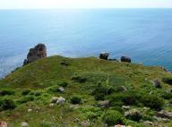Черно море,31 октомври,Международен ден на Черно море