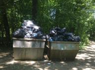 Контейнерите с боклука на Борисовата градина насред гората