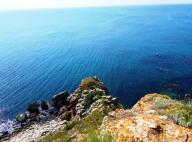 Черноморска мрежа на неправителствените организации продължава да информира за к