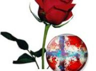 Подкрепа, симпатия и солидарност към жертвите, техните близки, и норвежкия народ